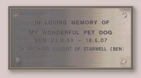 Ben the Champion Starwell Briard Plaque