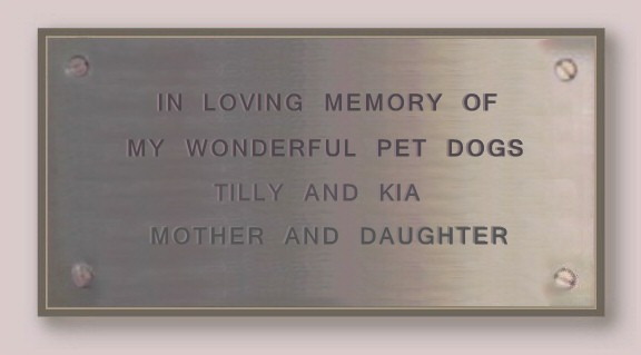 Tilly the Starwell Briard Plaque